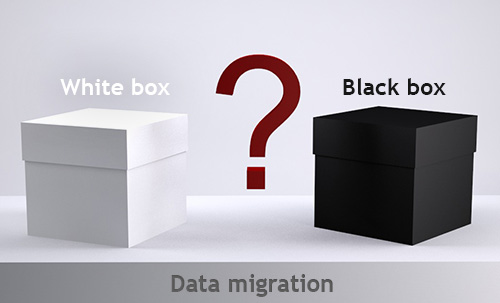 Testing Database Migration: Black Box or White Box?
